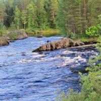 Река Тунтсайоки :: Нина северянка