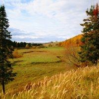 Вид на долину осенью :: Alla Markova