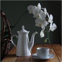 Вечернее чаепитие... :: Валентина Булкина