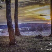 закат в моем городе :: Алексей Жариков