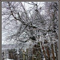 Долгая зима :: Евгений Жиляев