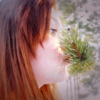 лес-хороший лес :: Юлия Потрохова