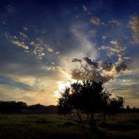 Июньский закат...2 :: Андрей Войцехов
