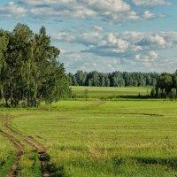 Полевая дорога :: Дмитрий Конев