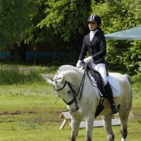 На белом коне :: Наталия Григорьева