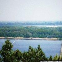 Зелёный остров и лиман Тарханка, Волга, Саратов :: Юрий А. Денисов
