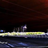 Ночное шоссе :: Александр Панфилов