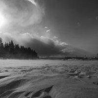 Буря зимнего солнца :: Сергей Шаврин
