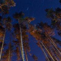 Небо :: Алексей Самарцев