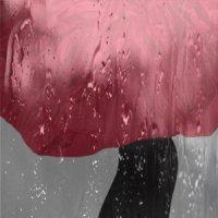 Чёрное платье,красный зонтик,дождь... :: Алла Шапошникова