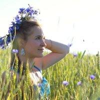 Васильковое поле :: Мария Вылегжанина