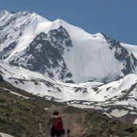 к леднику. высота здесь 3100 м :: Горный турист Иван Иванов