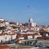 Прекрасный город у моря :: Natalia Harries
