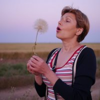 одуванчик упорно не поддавался... :: Андрей Козлов