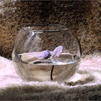 Цветок в вазе :: Елена Подоляк
