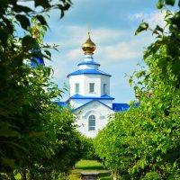 Церковь в старом городе. :: Alina Serbskay