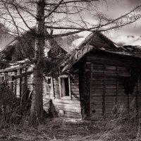 дом-призрак :: Светлана Радченкова