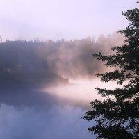 В дымке туманной... :: Валерий Лазарев
