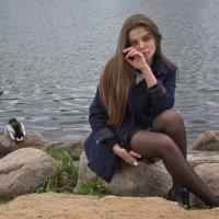 Мечты ..... :: Светлана З
