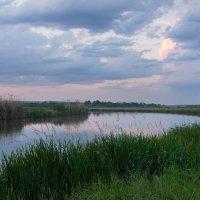 То, что осталось за кадром... )) Немного спокойствия природы... :: Райская птица Бородина