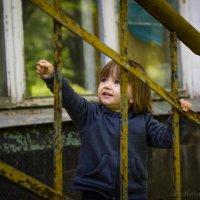 Дети города :: Светлана Радченкова