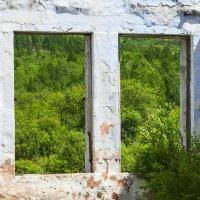 Окна в..... :: Сергей Сол