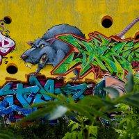 Граффити :: Игнат Веселов