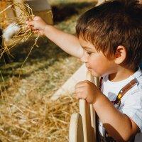 Детство..) :: Daria Snow