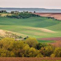Moravian landscape. :: Vladimir Nedayvoda