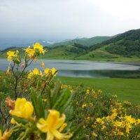 Озеро Эрцо :: Edward Kod