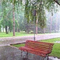 Дождливый июнь :: Алексей Меринов