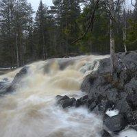 пороги на реке Тохмайоки :: Игорь Шипов
