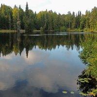 о. Валаам. Внутреннее озеро Коневское. :: Елена Павлова (Смолова)