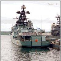 Североморская детвора гуляет... :: Кай-8 (Ярослав) Забелин