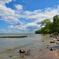 Залив в Петергофе :: Александр С.