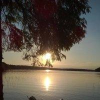 Вечер на Озере. :: Игорь