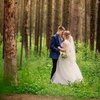 Свадебная фотография www.nikonorovaolga.com :: Ольга Никонорова
