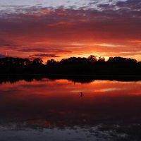 Багряный закат. :: Антонина Гугаева