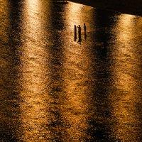 Ночное купание :: Андрей Липов