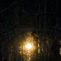 Луч света в темном царстве... :: Денис Пшеничный