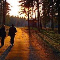 Идущие к солнцу... :: Вячеслав Минаев