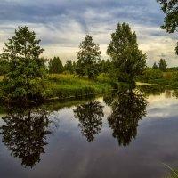 Перед дождём :: Андрей Дворников