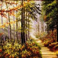 Шелковый лес! :: Den Ermakov