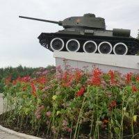 Великие Луки - 22 июня 2015 года... :: Владимир Павлов
