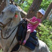 Лошади все возрасты покорны! :: Сергей Пестин