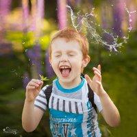 Лето - это маленька жизнь :: Екатерина Герасимова