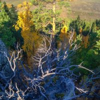 Страшная сказка, рассказанная в горах :: Сергей Шаврин