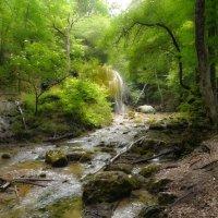 фантазия на тему крымского леса :: Андрей Козлов
