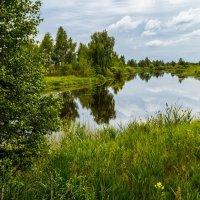 Лето - это маленькая жизнь :: Андрей Дворников