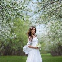 Цветущее коломенское :: Ludmila Zinovina